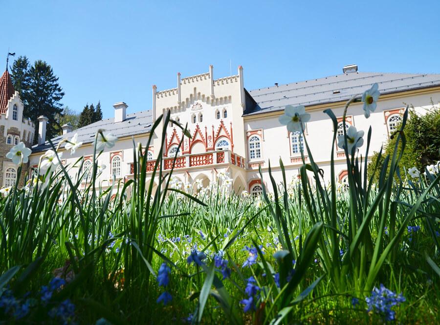 Líbánky na zámku Chateau Herálec