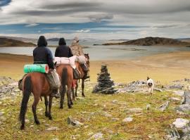 Putování na koních Quarter Horse